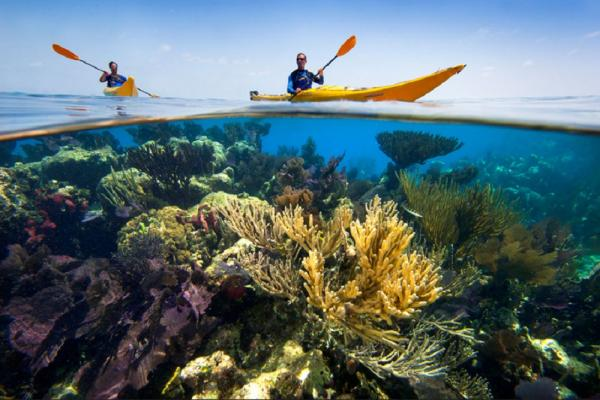 Kayak through clear blue waters
