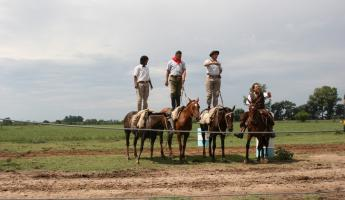 Argentine gauchos demonstrate their horsemanship