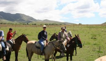 Horseback riding tour in Mendoza, Argentina