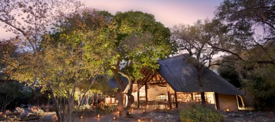 Experience the serenity of Ngala Safari Lodge