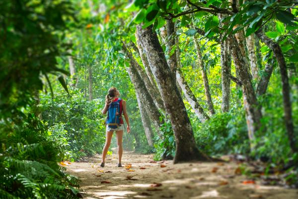 Hiking Costa Rica's stunning rainforests