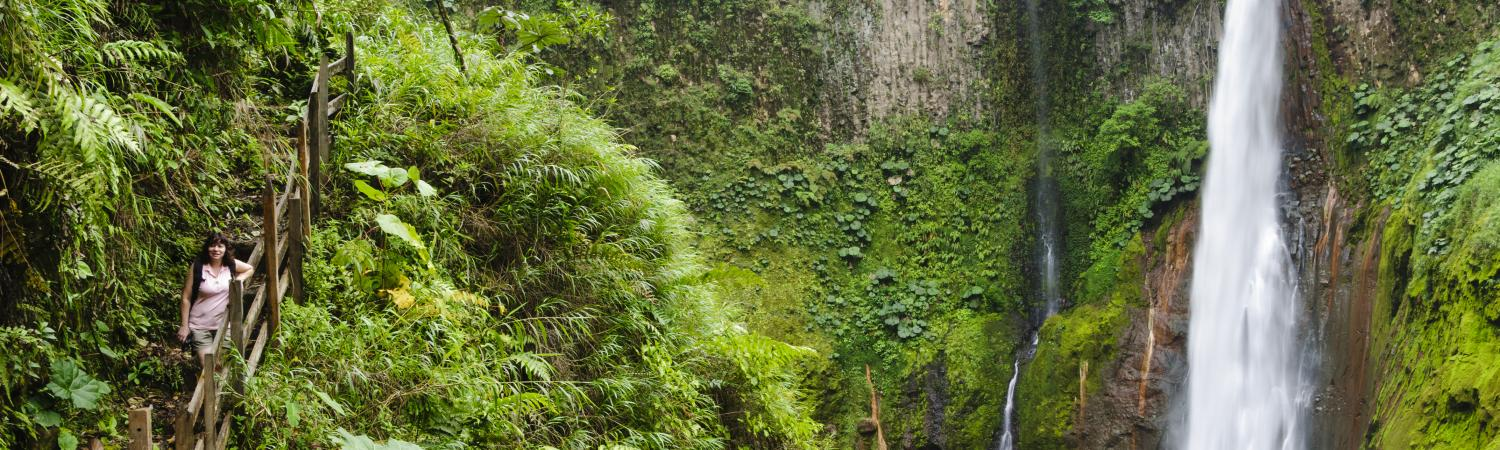 Visit the lush jungle and stunning waterfalls