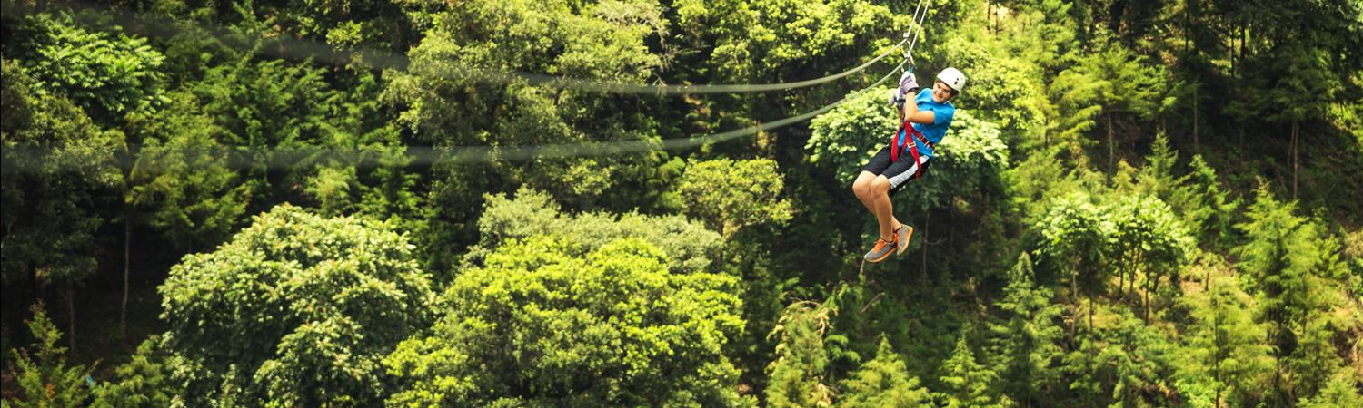 Zipline through the rainforest canopy