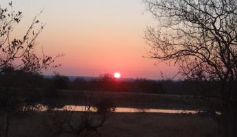 Sunrise at Thornybush Reserve