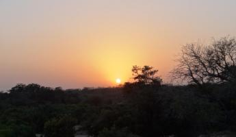 Sunrise Thornybush Reserve