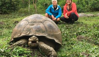 Highlands of Santa Cruz to see tortoises