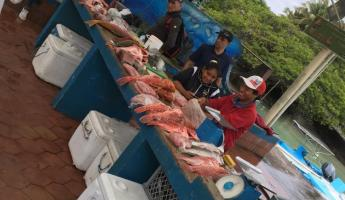 Fish market in Puerto Ayora