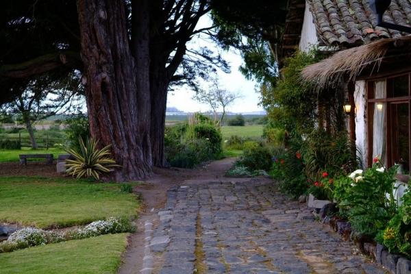 Enjoy the breathtaking view from Hacienda San Augustin de Callo