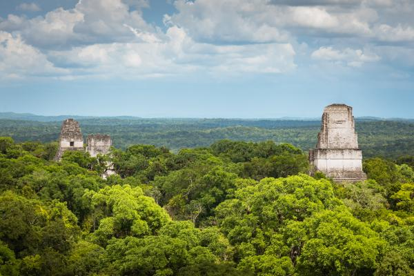 The view from Tikal ruins