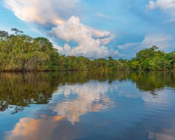 Sunset over the still waters of the Amazon