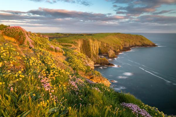 Golden light along the cliffs of the Irish coast