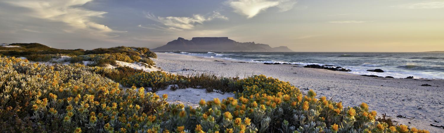 Scenic view of Table Mountain