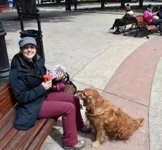 Punta Arenas, Chile - SO many stray dogs
