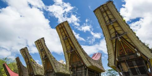 Learn about the history and culture of Sulawesi