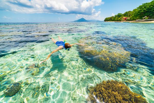Explore the coral reefs