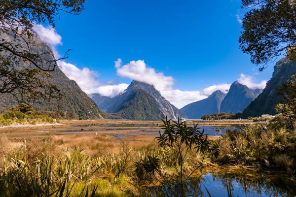 Explore the stunning Milford Sound