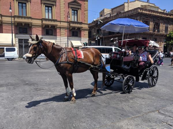 Carriage ride in Palermo