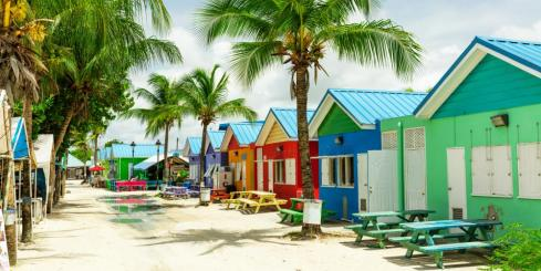 Take in the sights, sounds, and colors of Barbados
