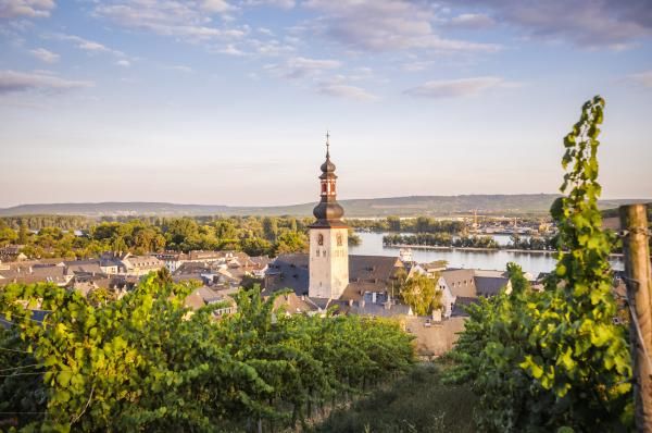Explore beautiful Rudesheim