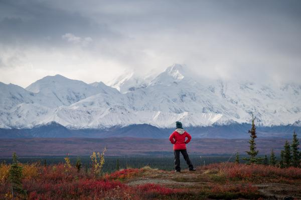 Enjoy a hike to try to see Denali
