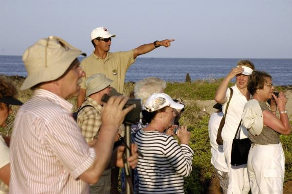Looking for wildlife on a beach excursion in the Galapagos