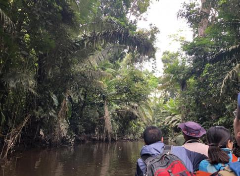 Feeling surrounded by the jungle as we paddle to La Selva.