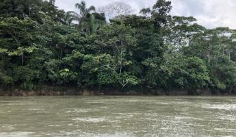 "The only time you'll feel ""cool"" in the Amazon. Watching the jungle pass by from the motorized canoe."