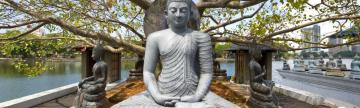 Buddha statue at a temple complex in Colombo