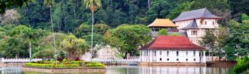A quiet moment near the Temple of the Sacred Tooth in Kandy