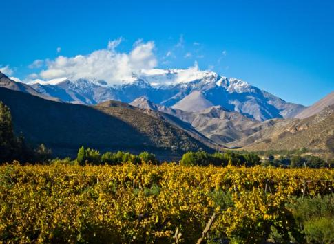 Discover the beauty of the Elqui valley