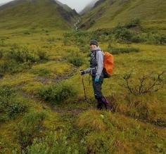 Hiking in Denali