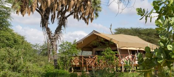 The beautiful Elephant Bedroom camp in Samburu Reserve