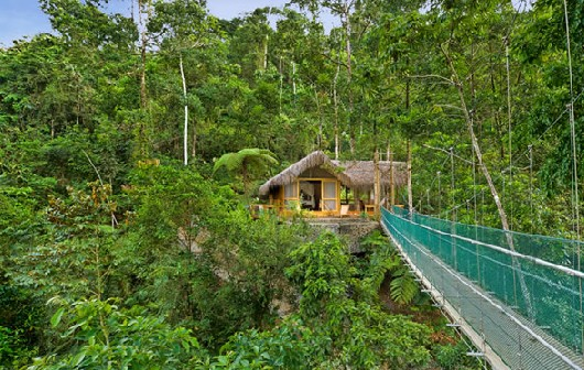A hanging bridge takes you to the lodge