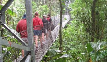 Hanging bridges hike--Arenal