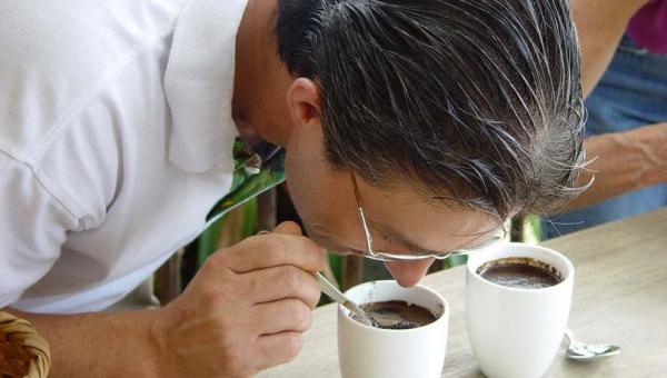 Sample a delicious cup of coffee