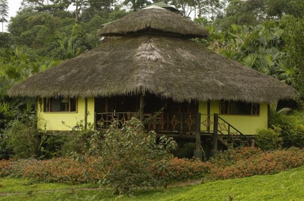Lodge accommodations at Arasha Resort and Spa