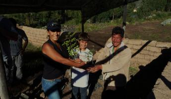 RECEIVING OUR TREES TO PLANT