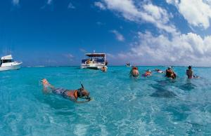 Snorkelling the warm waters
