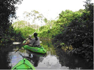 Kayaking into a lagoon off the Napo River
