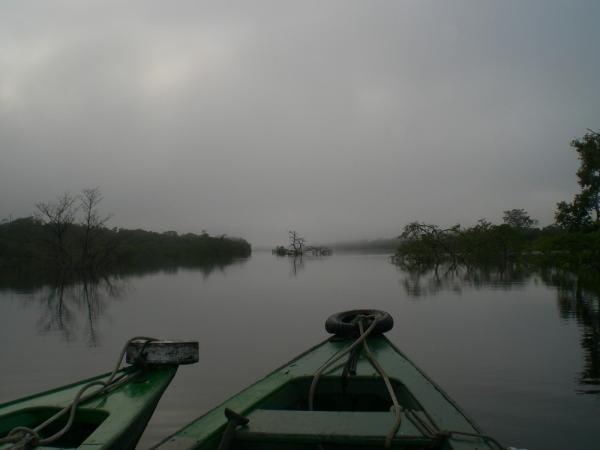 Morning canoe trip
