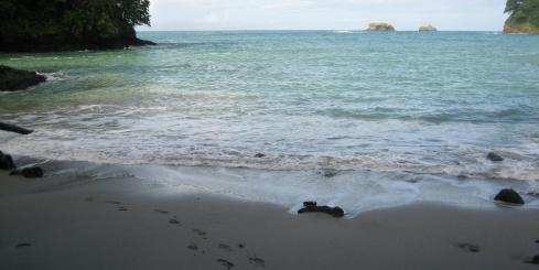 Enjoy the beautiful beaches of Manuel Antonio.