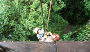 Day 7: lowering down the platform into the jungle below