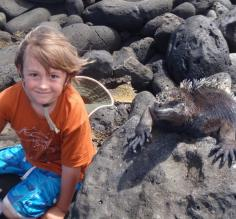 Making friends with a marine iguana in the Galapagos