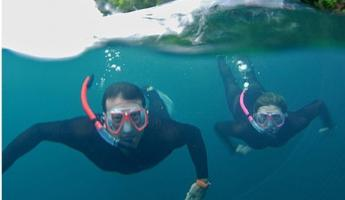 Enjoy amazing snorkelling