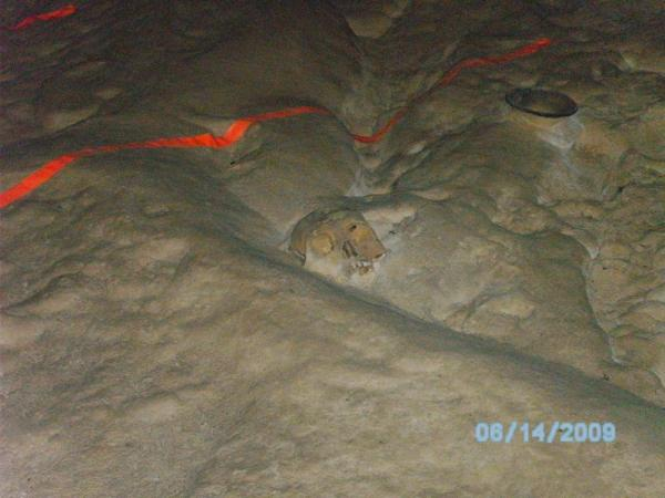 Skull in Belize\'s ATM cave