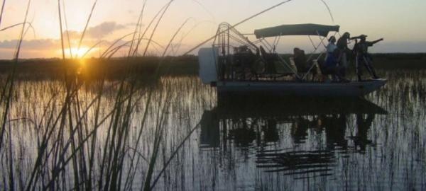 Airboat takes you to many adventures