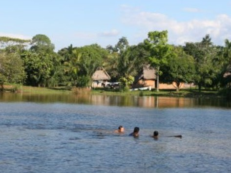 Refresh with a swim in the Madidi River