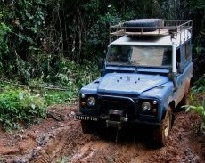 Explore the savannah by Land Rover