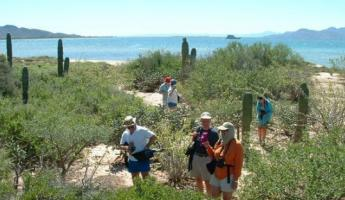 Enjoy a variety of shore excursions