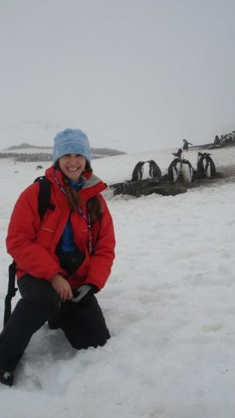 First Gentoo penguin encounter at Aitcho (pronounced H.O.)